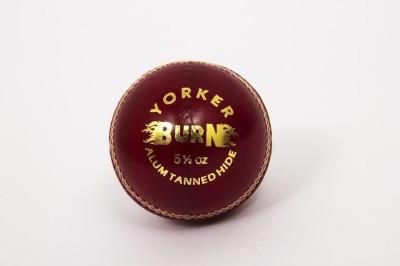 Burn Yorker Cricket Ball -   Size: 5,  Diameter: 2.5 cm
