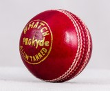 Prokyde Match Cricket Ball Cricket Ball ...