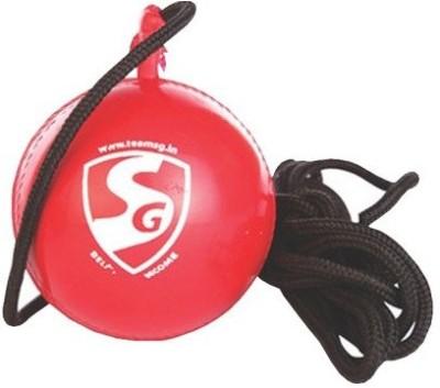 SG ibll Cricket Ball -   Size: 5,  Diameter: 2.5 cm