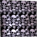 Fancy Steps Skull Men's Printed Bandana