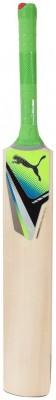 Puma Evospeed Chromium Force Gt Kashmir Willow Cricket  Bat