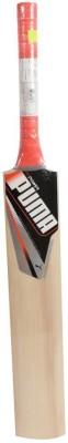 Puma Evo Power Kashmir Willow Cricket  Bat