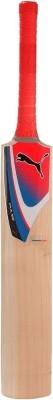 Puma Pulse GT Kashmir Willow Cricket  Bat