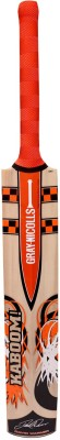 Gray Nicolls Kaboom Smash Kashmir Willow Cricket  Bat(Short Handle, 700-1200 g)