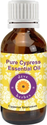 DèVe Herbes Pure Cypress Essential Oil (10ml)- Cyperus Seariosus