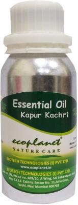 ecoplanet Essential oil of Kapur Kachri
