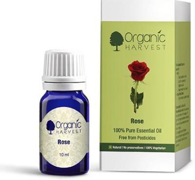 Organic Harvest Rose Essential Oil