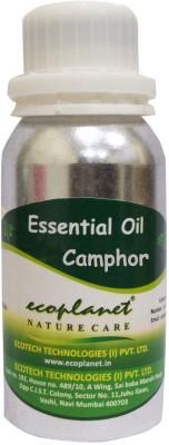 ecoplanet Essential oil of Camphor