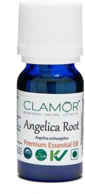 Clamor Angelica Root (Archangelica)