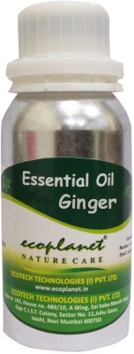 ecoplanet Essential oil of Ginger