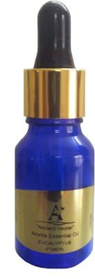 Ancient Healer Eucalyptus Essential Oil