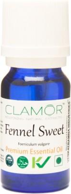 Clamor Fennel Sweet (Foeniculum vulgare)