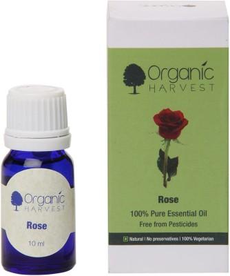 Organic Harvest Rose Oil