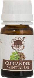 Old Tree Coriander Essential Oil(15 ml)