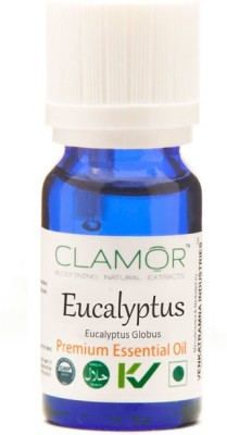 Clamor Eucalyptus (Eucalyptus Globulus)