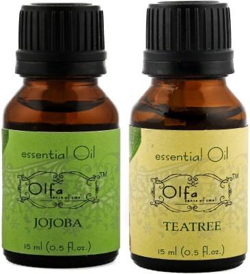 Olfa Jojoba Essential Oil & Tea Tree Essential Oil Combo (Pack Of 2) 15ml+15ml
