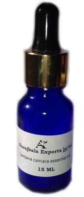 Ancient Healer Lantana Camara Essential Oil