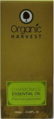 Organic Harvest Chamomile Essential Oil