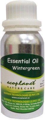 ecoplanet Essential oil of Wintergreen