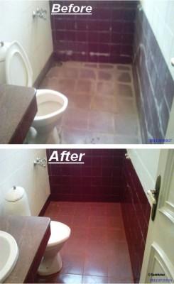 Sunshines pupa Hi power stain remover Bathroom Floor Cleaner