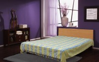 Dhrohar Cotton Double Bed Cover(Blue, Green)