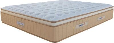 SPRINGFIT RGOLD80606 King Foam Mattress