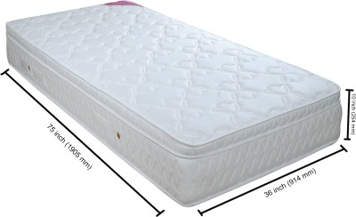 Springwel Divinity Collection 10 inch Single Spring Mattress