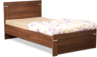 Debono Solitaire AD NB Bed Engineered Wood Single Bed(Finish Color -  Acacia Dark Matt Finish)