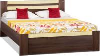 Debono Woody AD NB Bed Engineered Wood Queen Bed(Finish Color -  Acacia Dark & Maple matt Finish)