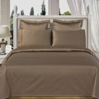 Amrich Cotton Plain Queen sized Double Bedsheet(1 Bedsheet, 2 Pillow Covers, Taupe)