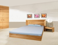 Ishta Cotton Plain Single Bedsheet(1 Fitted Sheet, Icy Blue)