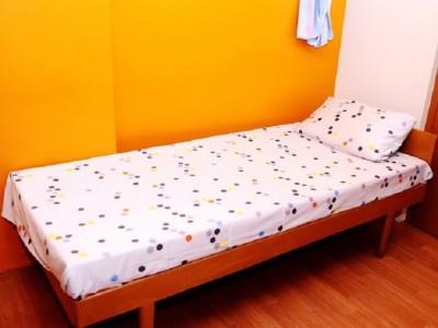 Tidy Cotton Printed Single Bedsheet