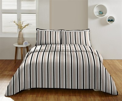 DCTex Furnishings Cotton Striped King sized Double Bedsheet