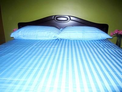 Linen Wings Cotton Striped King sized Double Bedsheet