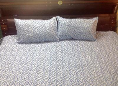 Prakki Cotton Printed Double Bedsheet
