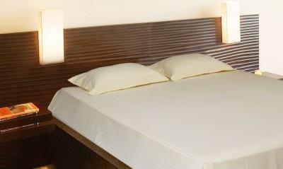 Elan Cotton Plain Double Bedsheet
