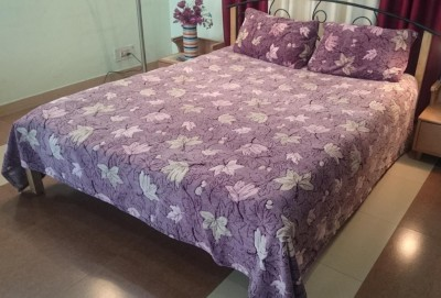 Jojo Designs Polyester Abstract Queen sized Double Bedsheet