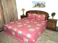 Amita Home Furnishing Cotton Printed Queen sized Double Bedsheet(1 Double Bed Sheet, 2 Pillow Cover, Multicolor)
