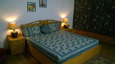 Trellis Cotton Printed Double Bedsheet