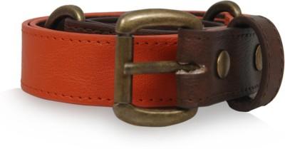 Baggit Girls, Women Casual Orange Synthetic Belt