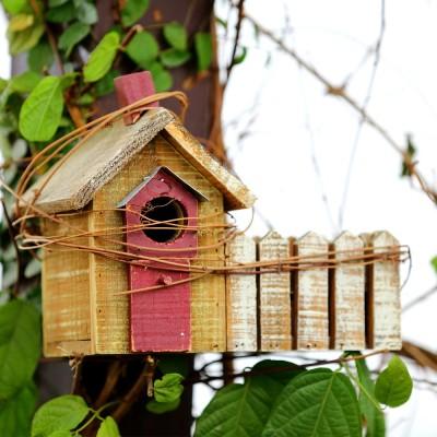 Deziworkz Platform Bird Feeder(Brown)