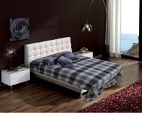 Raymond Checkered Double Blanket Grey(Blanket)