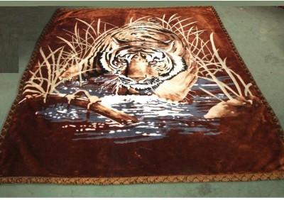Florida Animal Double Blanket Brown