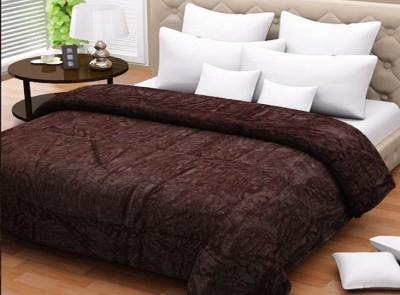 Wrap Paisley Double Blanket Brown