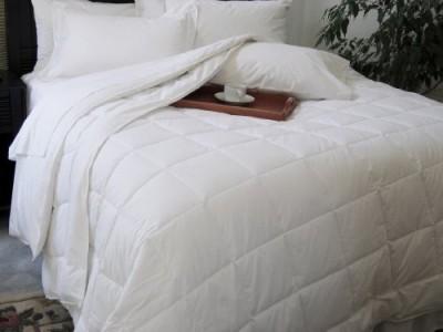Natural Comfort Plain