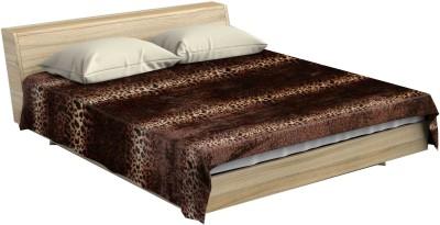 Stole & Yarn Animal Double Blanket Brown