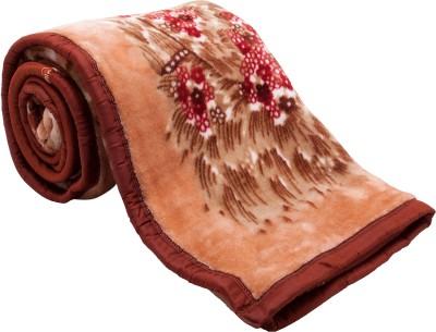 Feel Soft Floral Single Blanket Brown, Beige, Red