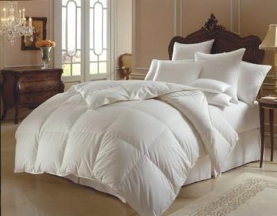 Elegant Comfort Plain White