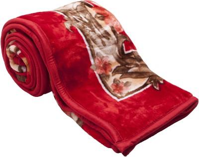 Feel Soft Floral Single Blanket Red, Brown