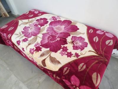 Florida Floral Single Blanket Pink, Maroon
